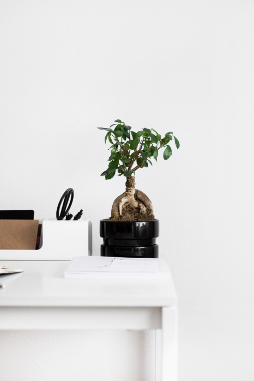 desk area | minimalist lifestyle